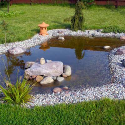 Natuurlijke regenwatervijver